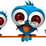 טוויטר – המדריך לצייצן המתחיל